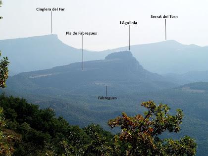 Panoràmica sobre les cingleres del Pla de Fàbrega i el Far des de l'extrem del Pla de Monteis