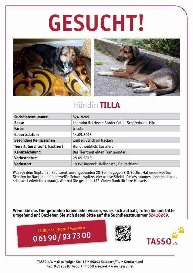 Tilla wurde entführt - wer hat sie gesehen?