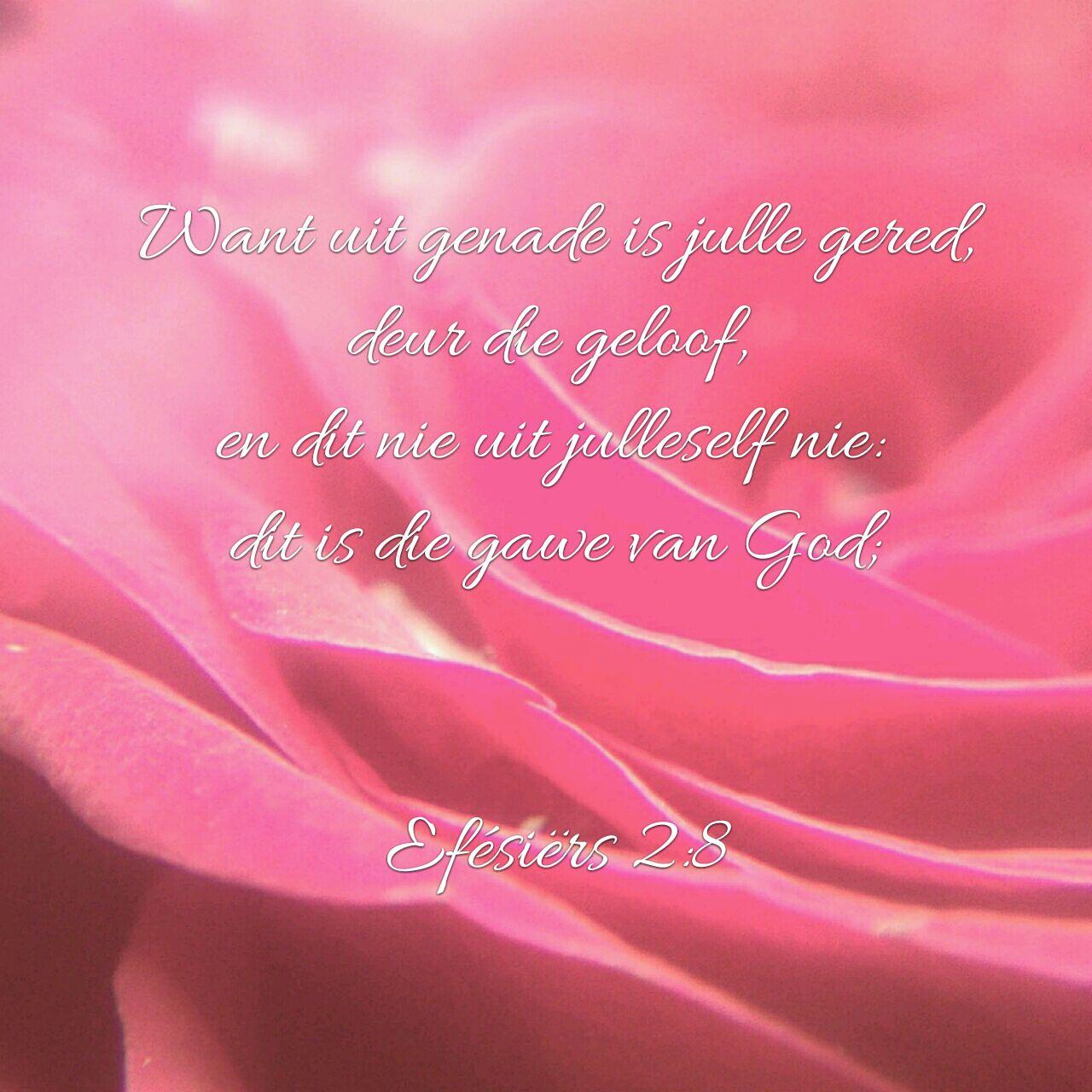 Want uit genade is julle gered deur die geloof, en dit nie uit julleself nie: dit is die gawe van God Efesiers 2:8