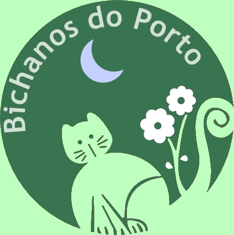 Bichanos do Porto