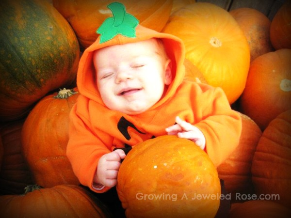 cute pumpkin photos this Fall