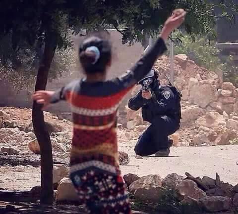 News dalla Palestina!