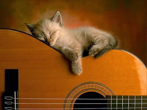 Tidurnya Orang Puasa Ibadah ?