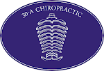 Visit the 30-A Chiropractic Website!
