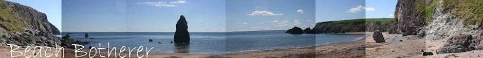 Beach Botherer