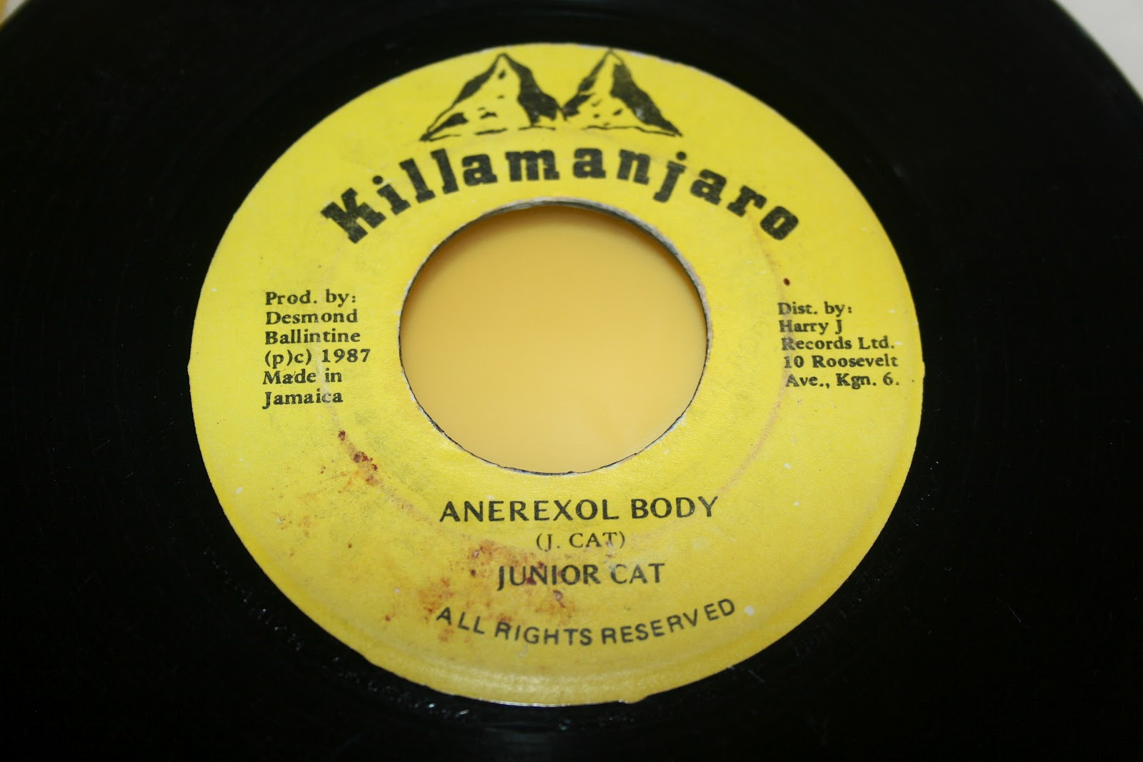 Junior Cat - Anerexol Body