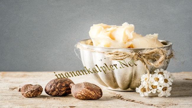 Shea Butter - Shea Yağı Nedir Ve Kullanım Alanları