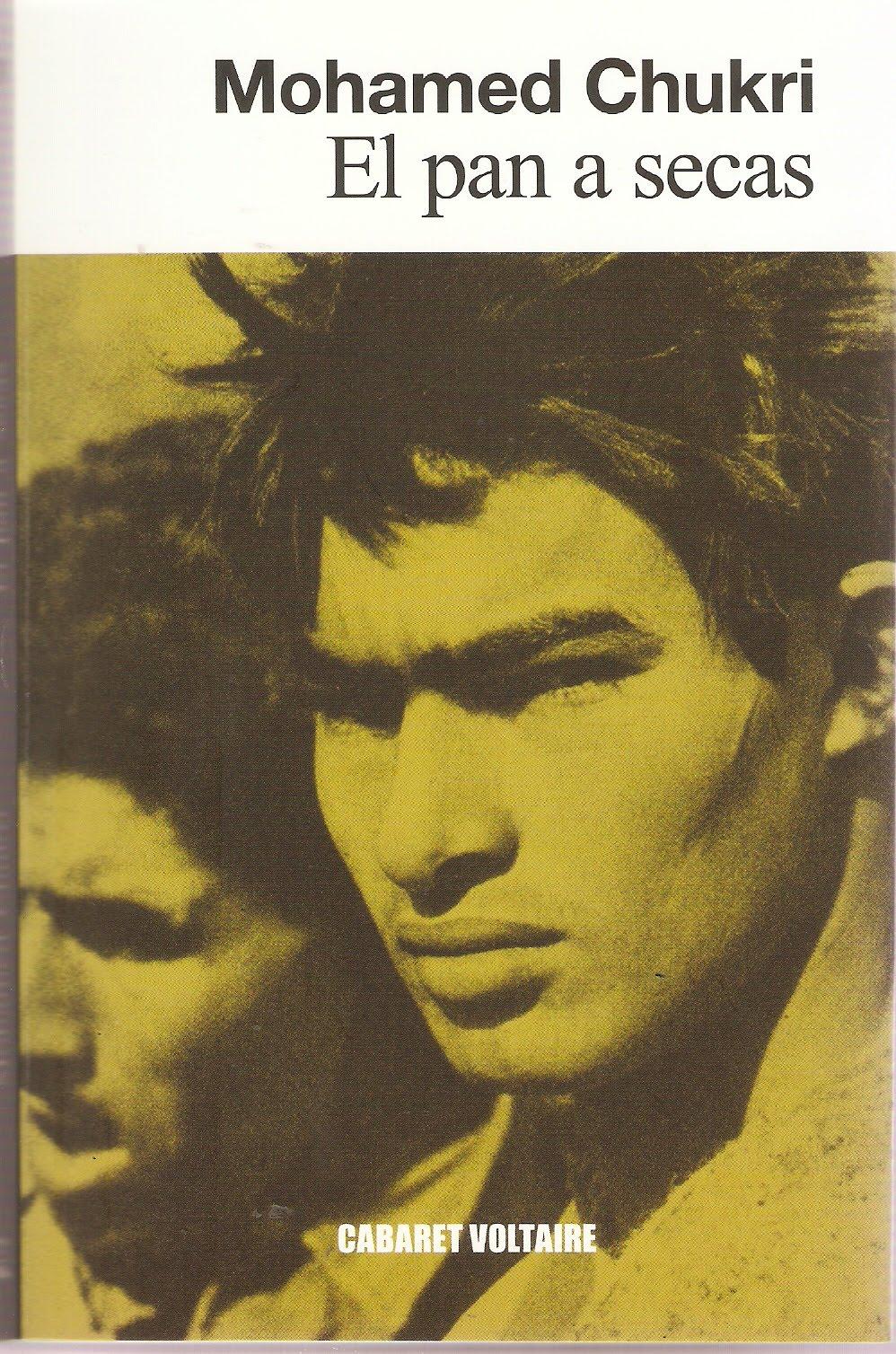 Pequeña gran novela autobiográfica