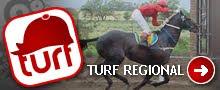 TURF REGIONAL