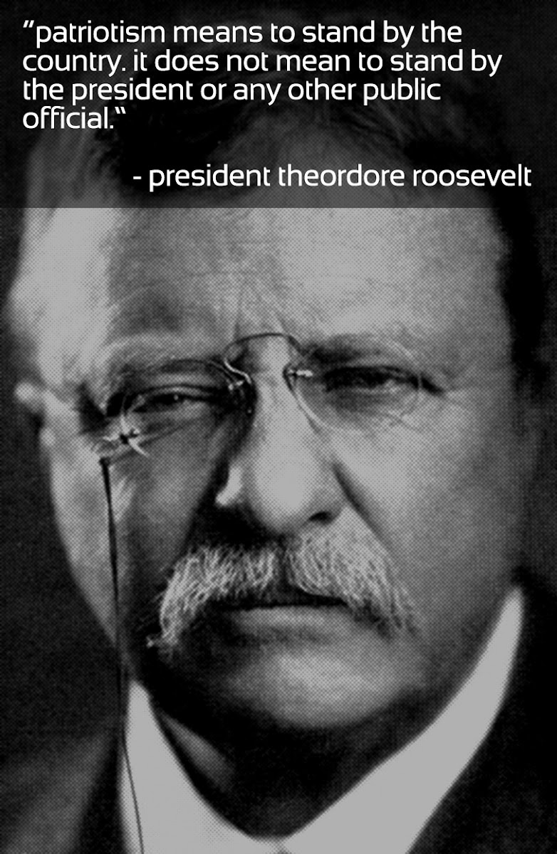 stand by your country, not elected officials | teddy roosevelt