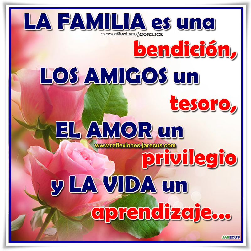 Frases de familia, amigos, amor, vida