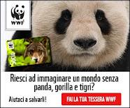 DIVENTA SOCIO WWF (Clicca sull'immagine)