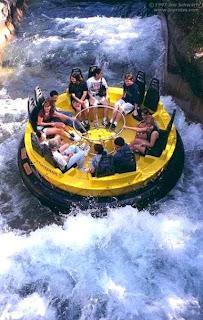 Busch Gardens Tampa Bay (Best Honeymoon Destinations In USA) 3