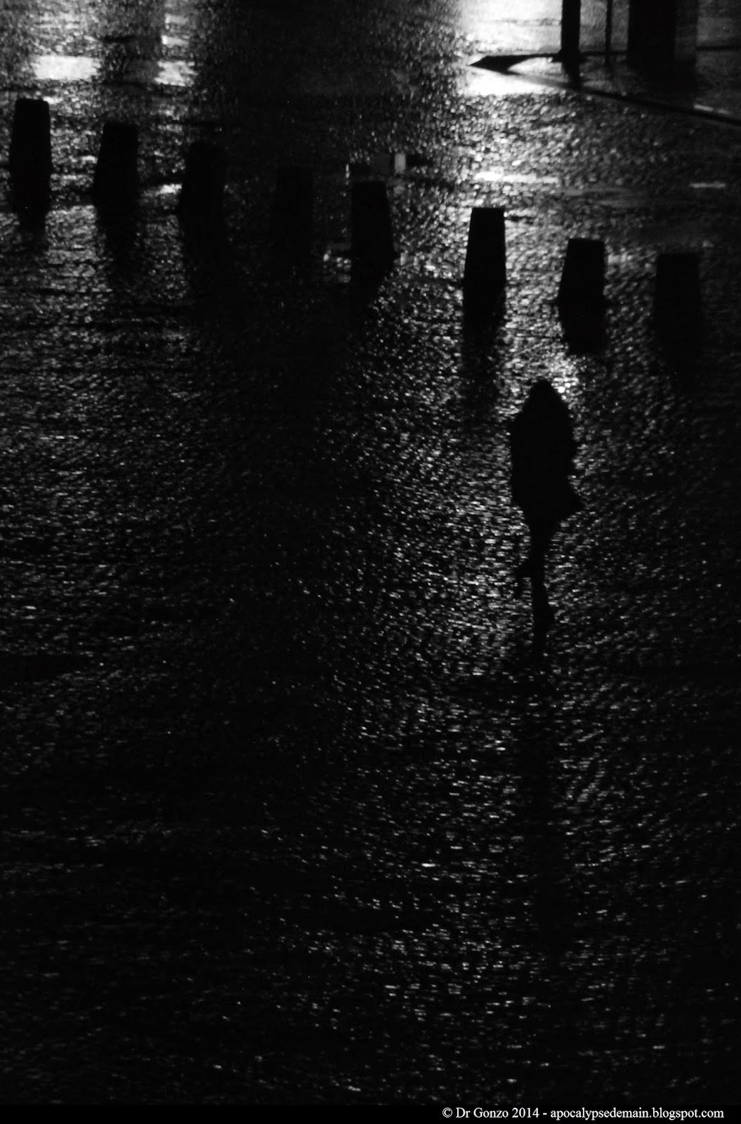 Shadows Night Macadam Bogart