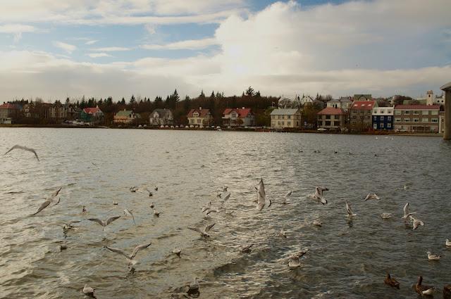 iceland, reykjavik, travelling, tjornin pond