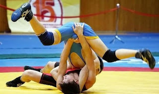 funny picture wrong grip on wrestling