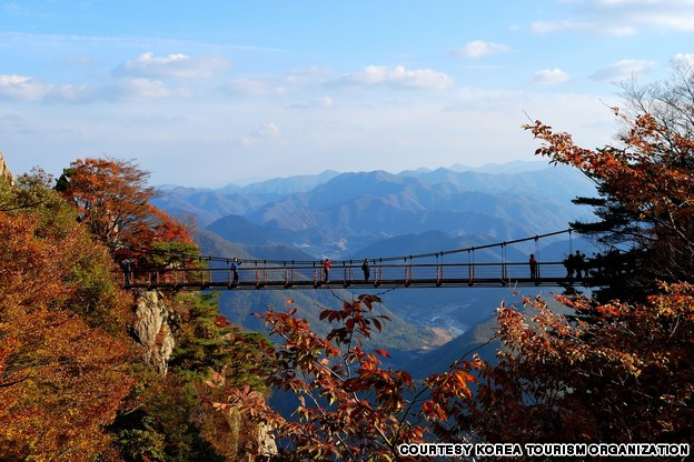 Daedun Mountain Suspension Bridge (대둔산 구름다리)