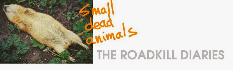 Small Dead Animals