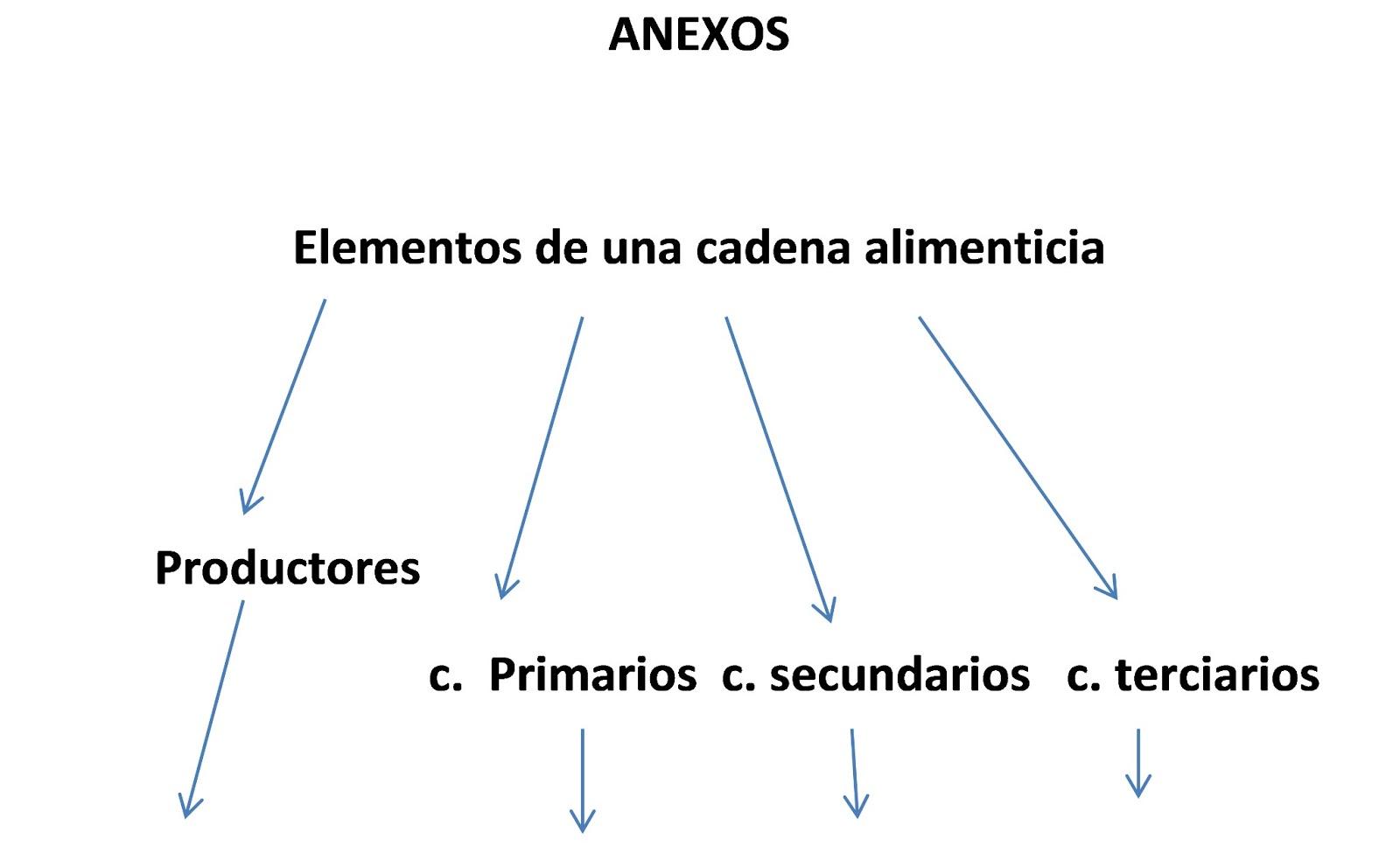 """CLASES PREPARADAS--ESTRATEGIA """"MAPAS CONCEPTUALES"""" 052: Clase de ..."""