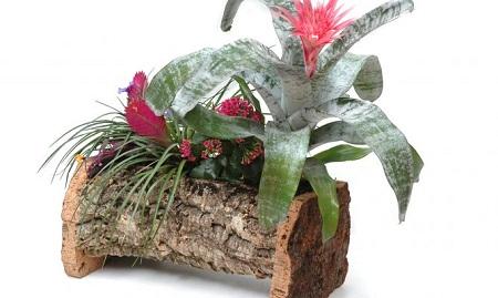 Econotas.com: 10 ideas para hacer macetas, los troncos como ...