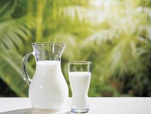 Terms And Types Of Milk A Good