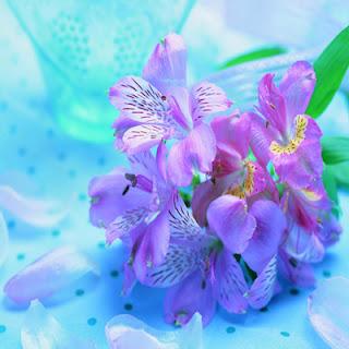 http://www.szivarvanydesign.hu/2012/01/024-uj-uzenet.html