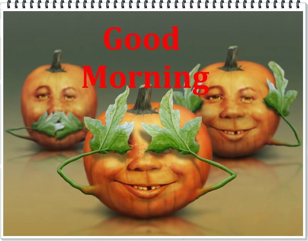 Funny pumpkins wishing good morning