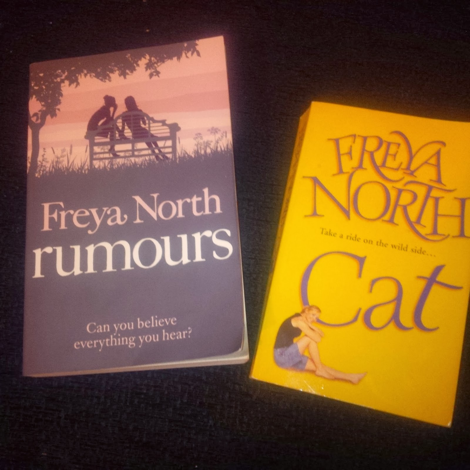 Rumours and Cat by Freya North