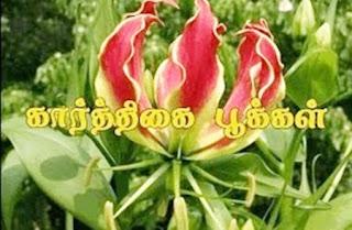 Karthigaipoo Short Film