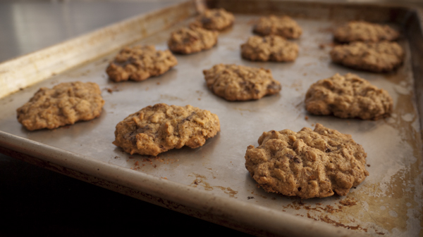 Tray of fresh-baked garam masala oatmeal chocolate chip cookies