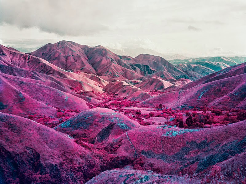 RICHARD MOSSE - infra