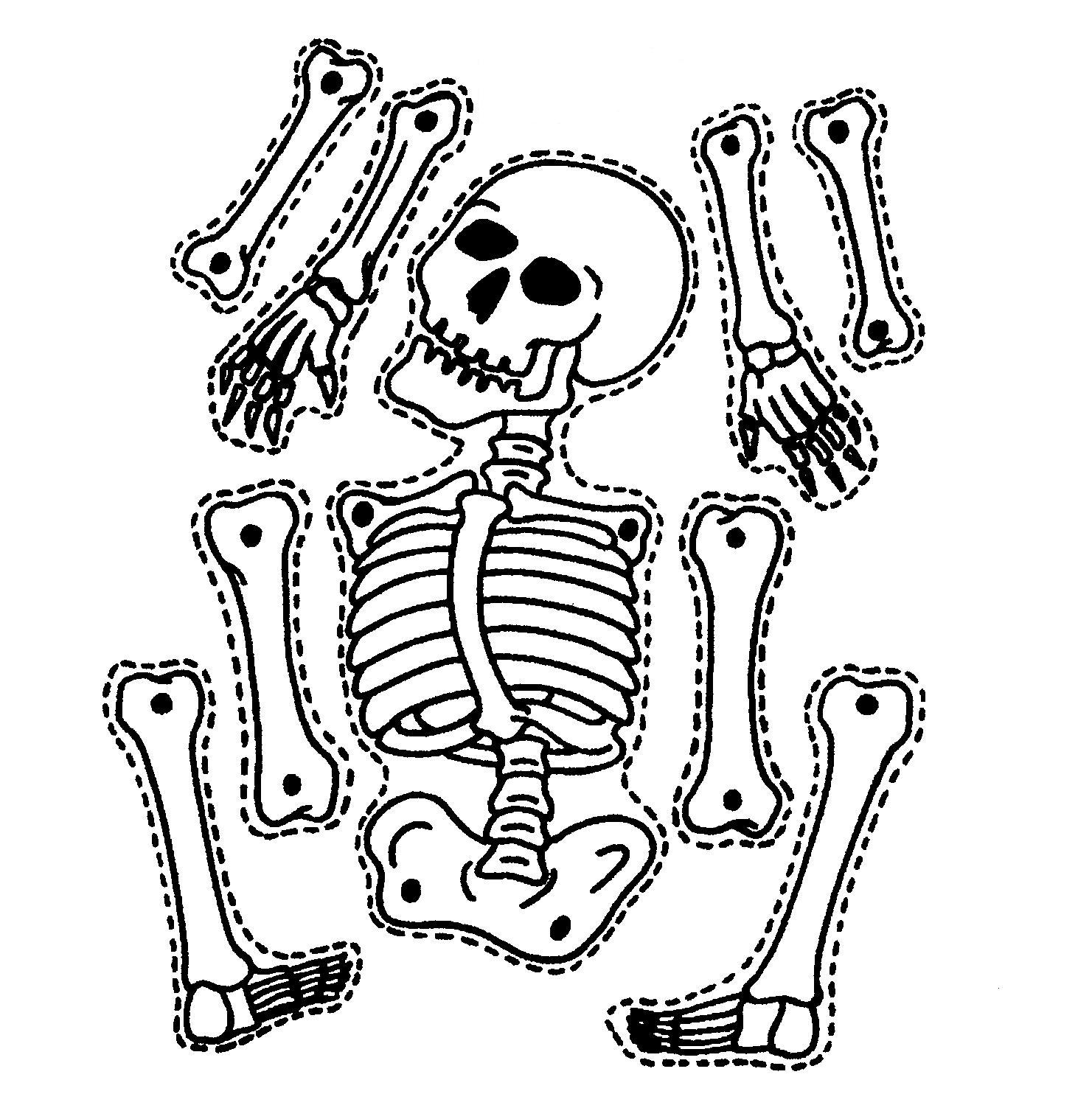 Lively image intended for printable skeleton template