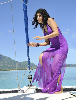 Tapasee pannu  hot &beautifful picture southindian actress 24