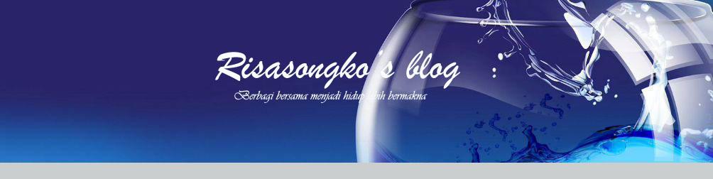 Risasongko's blog