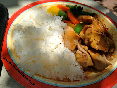 Chicken teriyaki from Katsura Grill in Epcot's Japan