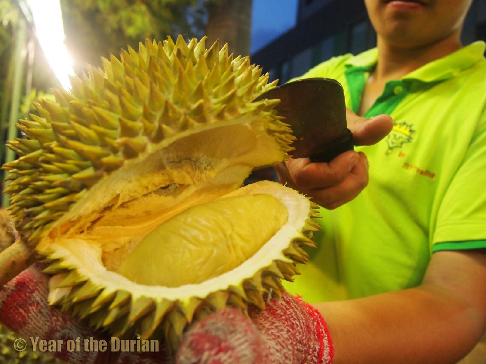 Singapore Durian Varie...
