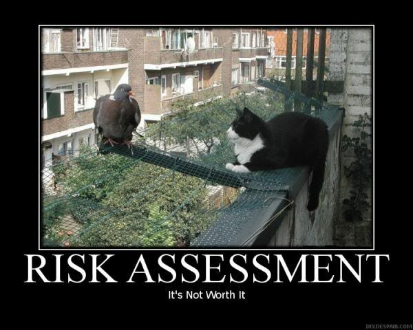 financial risk manangement In the financial world, risk management is the process of identification, analysis and acceptance or mitigation of uncertainty in investment decisions essentially, risk management occurs when an .