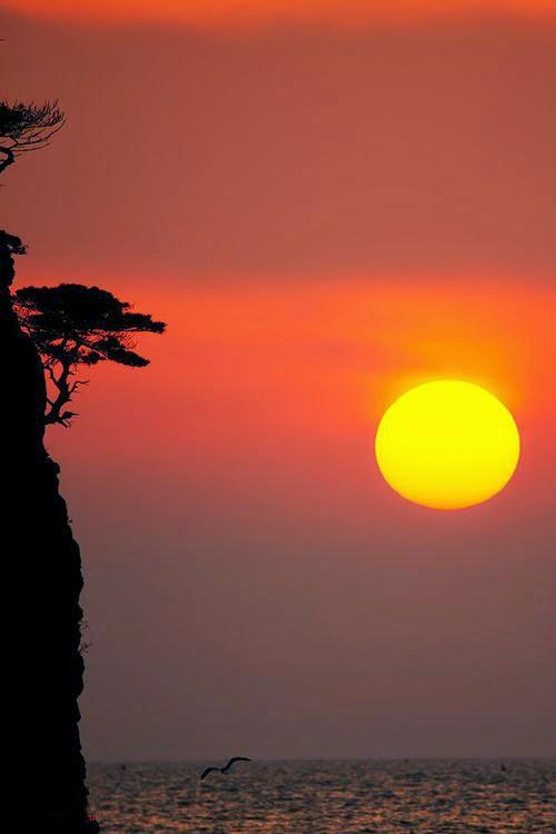 Oriental Twilight