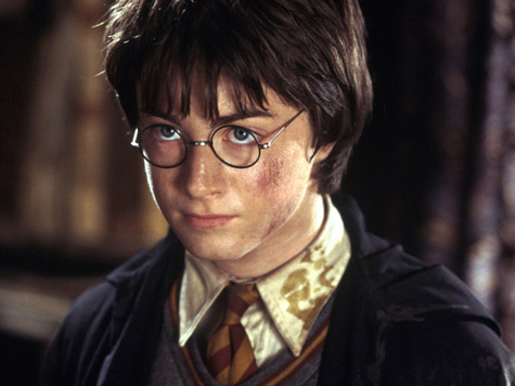 harry potter harry potter is a human boy there can be no mistaking ...