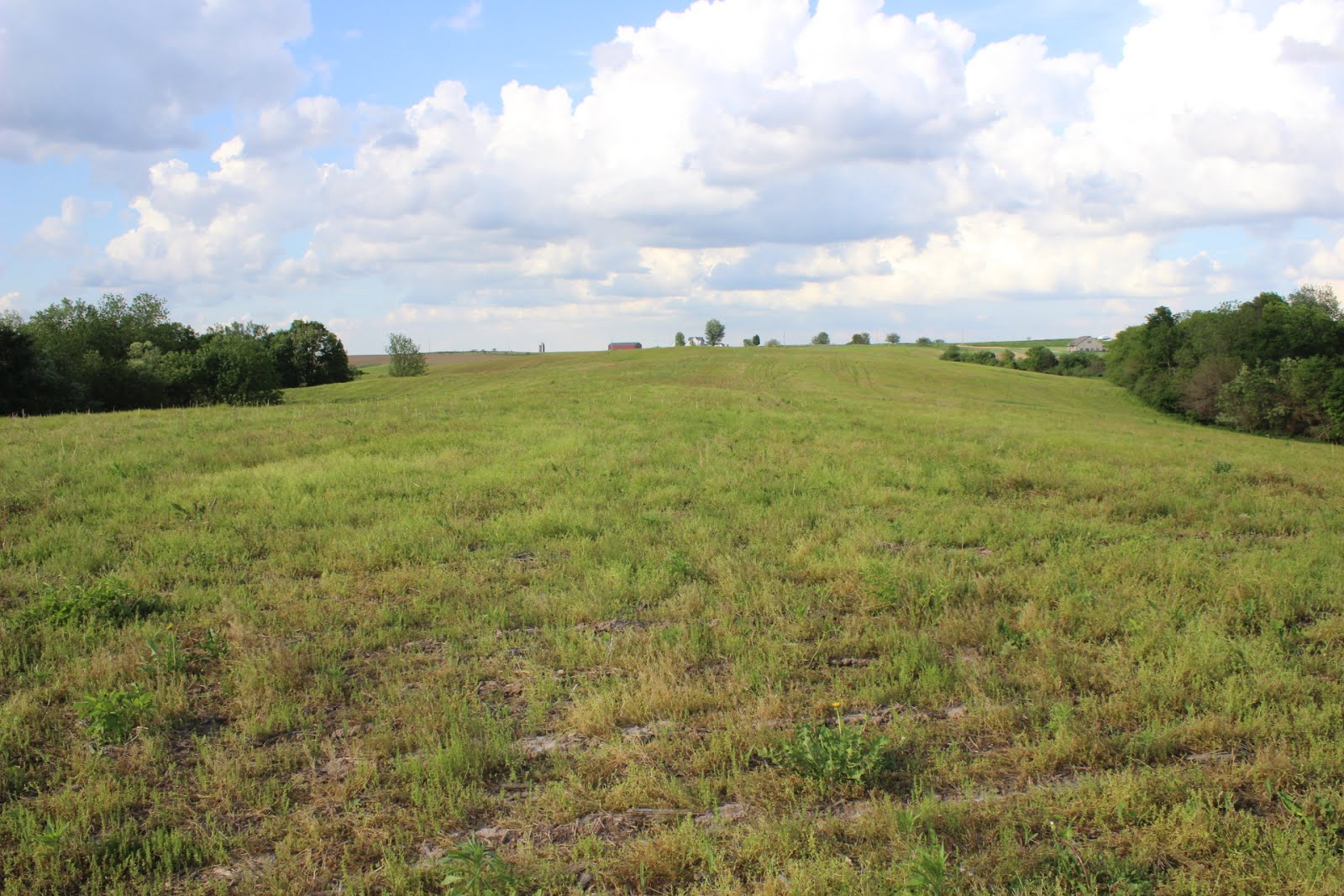 183.59 Acres, Section 6, Washington Township, Jackson County SOLD