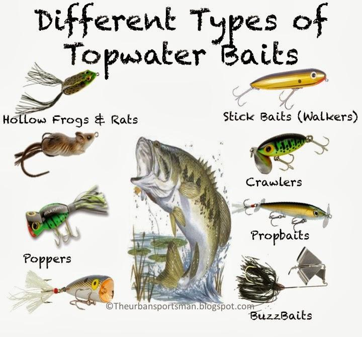 understanding topwater baits | the urban sportsman, Hard Baits