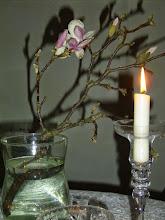 Für alle Opfer von Naturkatastrophen, Krieg und Gewalt
