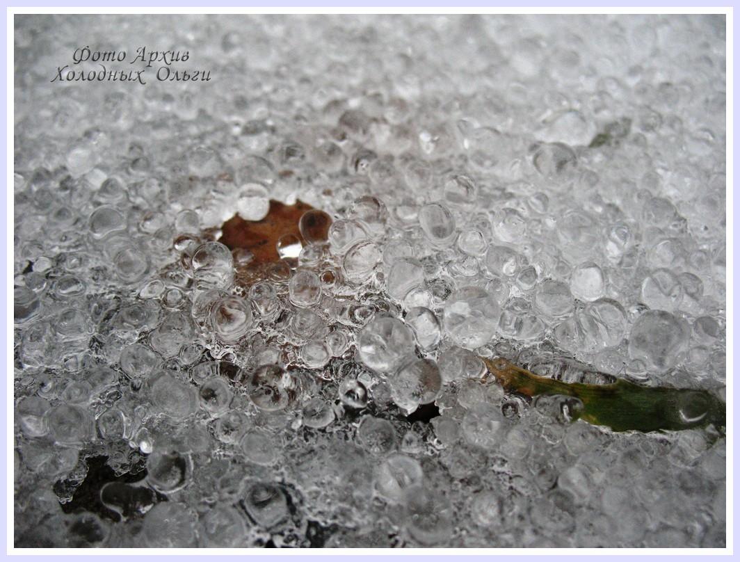 замороженный лист