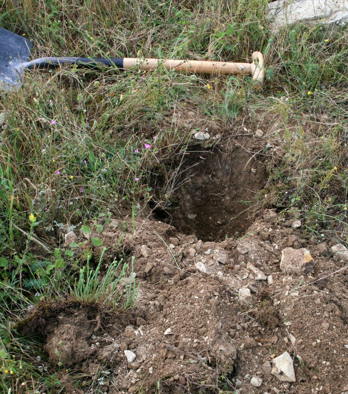 I dug a hole
