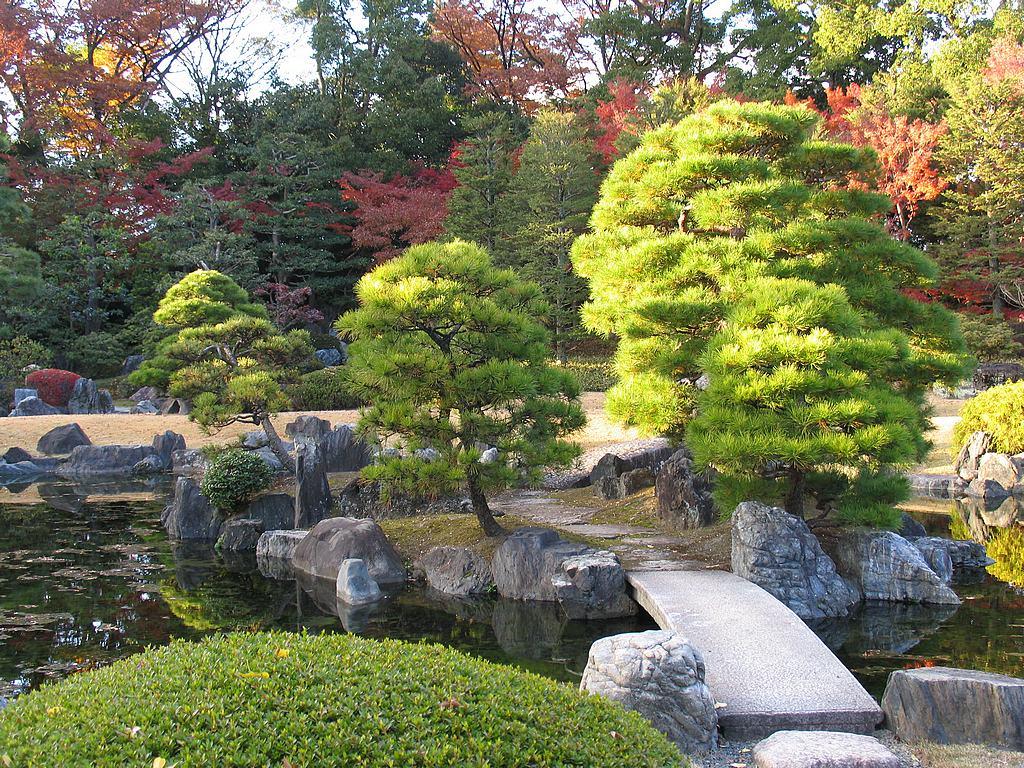 jardn japones - Jardines Japoneses