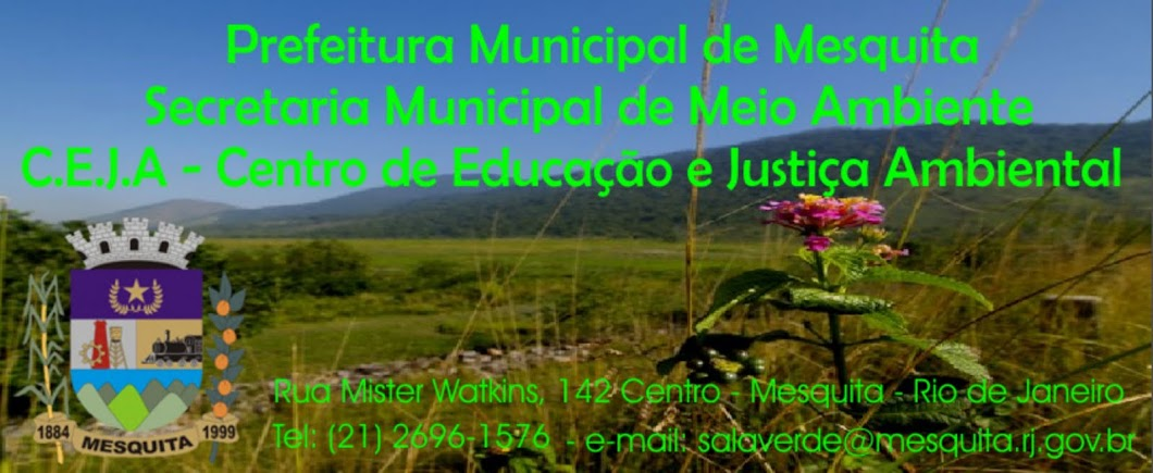 CEJA - CENTRO DE EDUCAÇÃO E JUSTIÇA AMBIENTAL