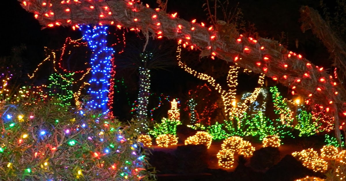 Christmas Garden Lights