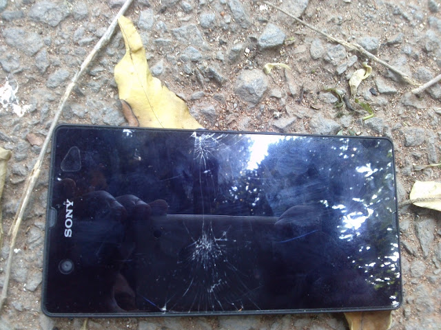 Sony Xperia Z Problems