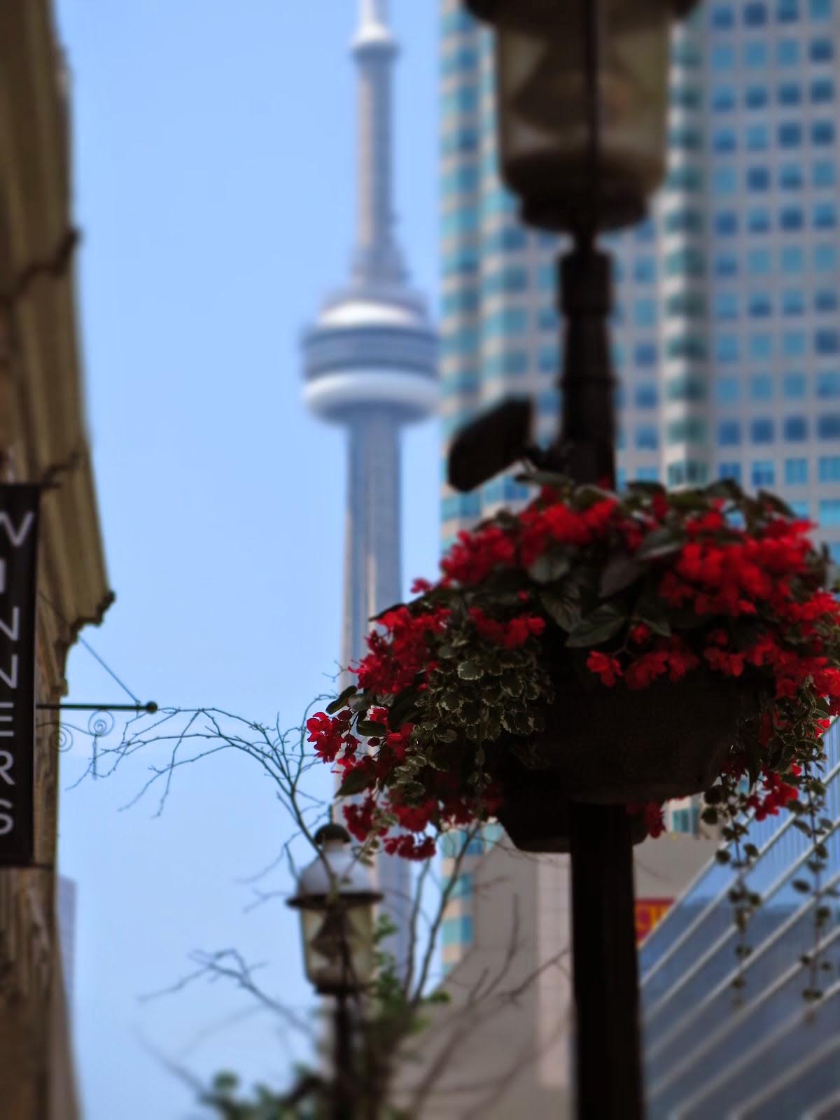 Toronto 2014