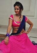 Shreya Vyas photos at Bengal Tiger audio-thumbnail-8